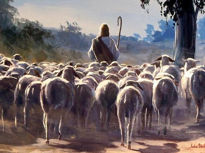 good_shepherd_3
